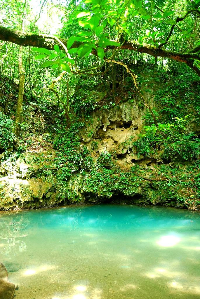 """The """"other"""" Blue Hole In Belize. #jungle #adventure"""