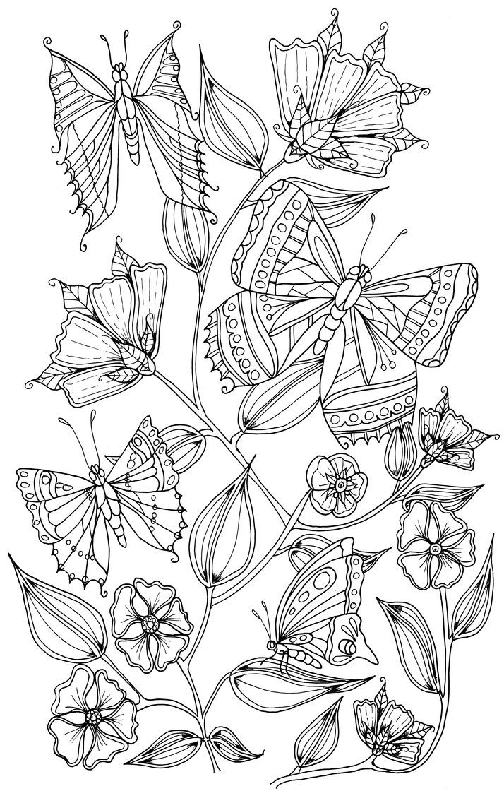 Butterflies Butterfly Coloring Page Enchanted Forest Coloring Book Coloring Pages