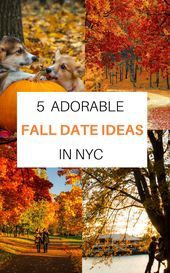 5 Adorable Fall Date Ideas in NYC –  5 Romantic & Super Cute (Not to mention Fun…