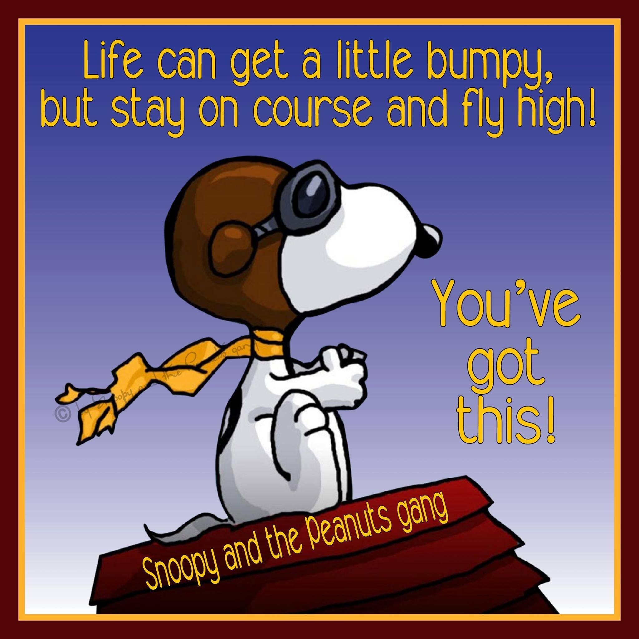 Pin de Cheryl Blakely en Snoopy & Peanuts | Pinterest