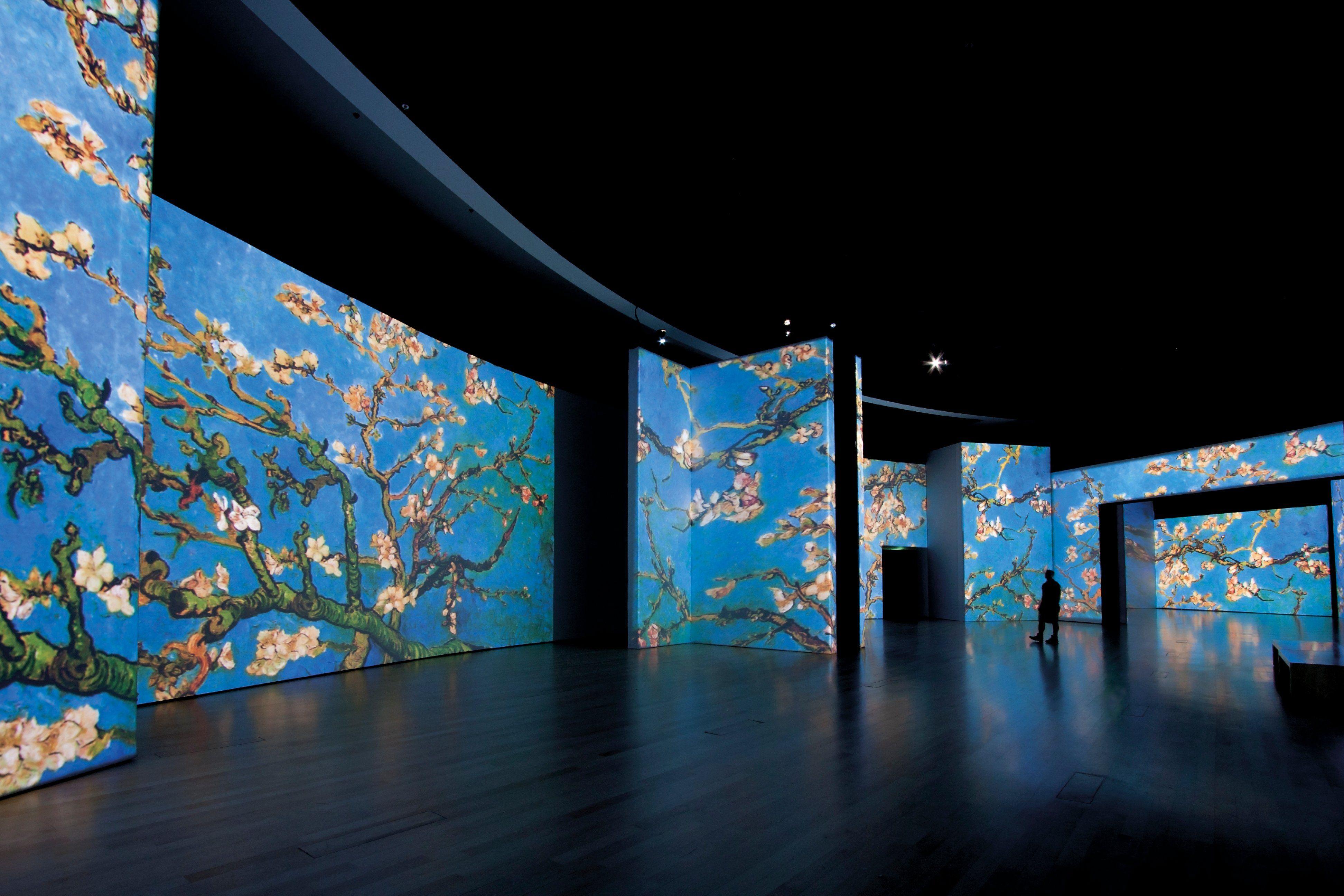 Van Gogh Alive Fechas Precio Y Todo Lo Que Debes Saber Van Gogh Pinturas De Van Gogh Exposiciones