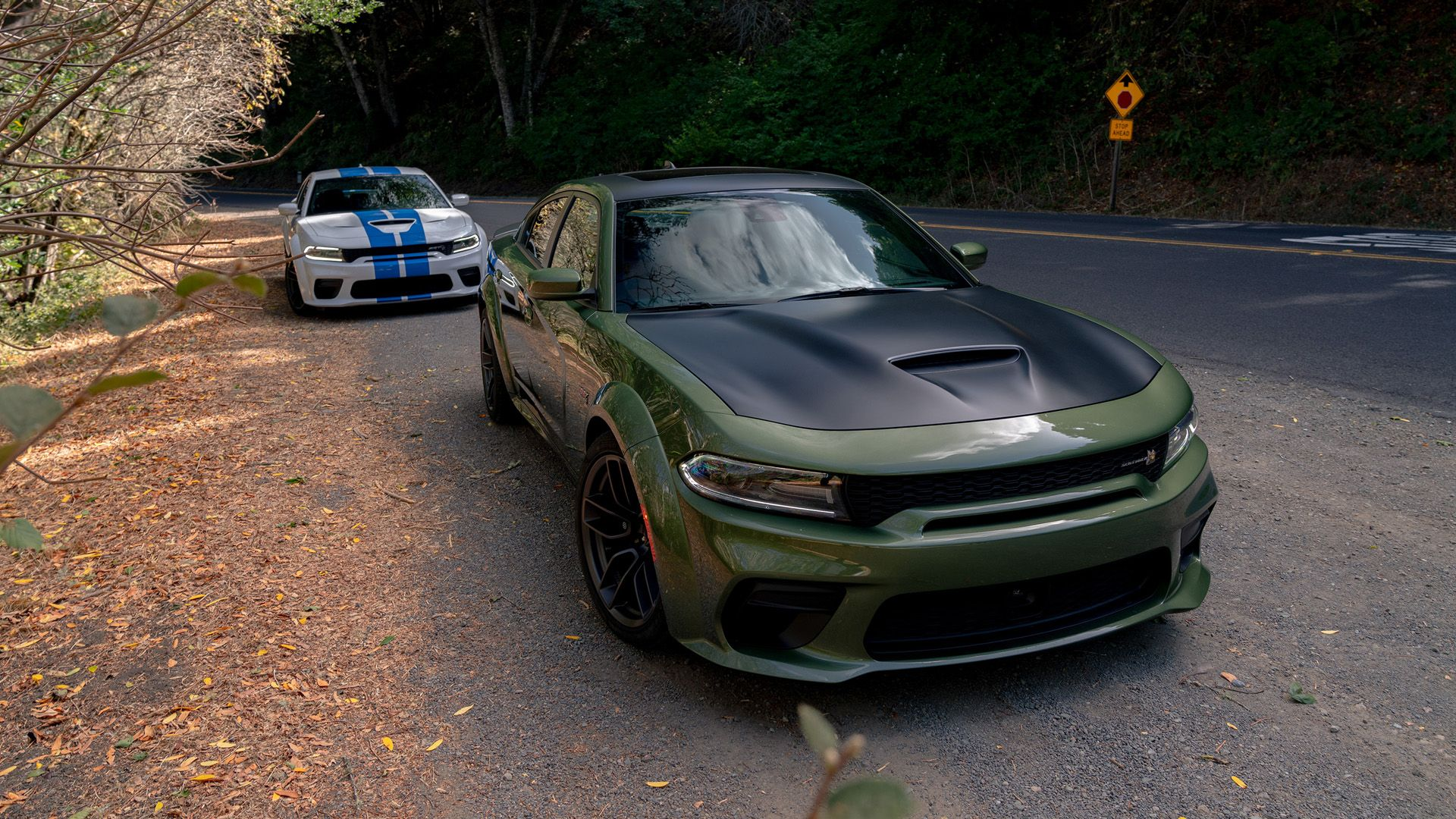2020 Dodge Charger Widebody First Drive Hellcat Scat Pack Daytona 50th Anniversary Dodge Charger Dodge Charger Srt Dodge Charger Hellcat