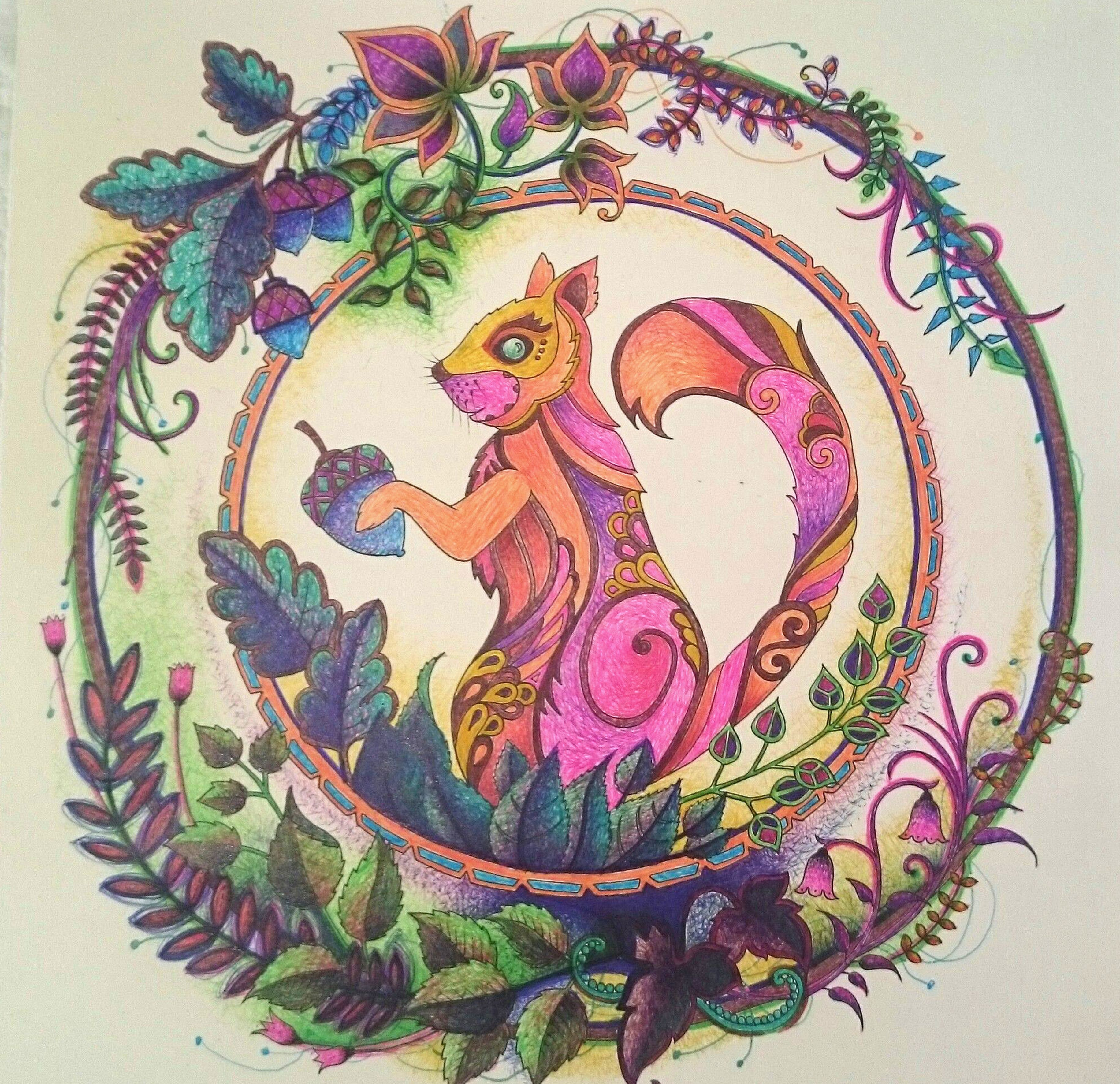 Johanna Basford Enchanted Forest Squirrel Coloured By Elvira Nel Using Pens BasfordSquirrelColoring BookPensForests
