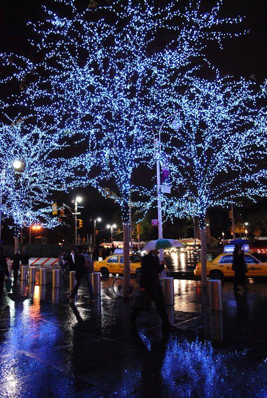 Blue Christmas Photo by Photographer William Mason Nyc