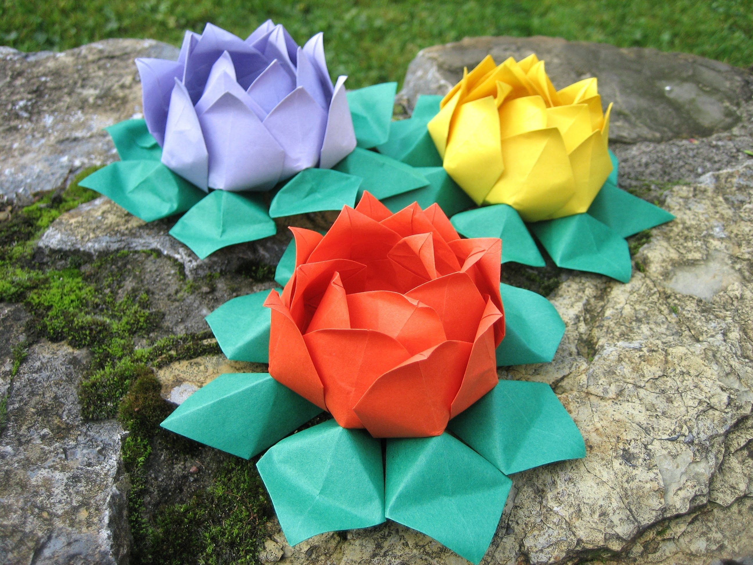 Origami Water Lily Modular Origami Flowers Pinterest