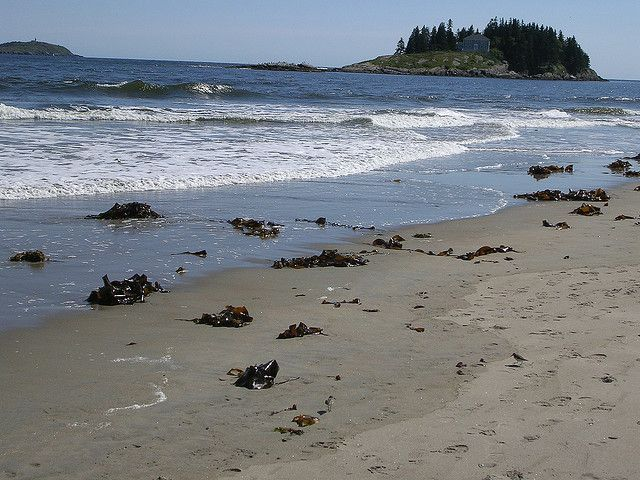 Popham Beach A Rarity In Maine Only 2 Of S 5 500 Coast Is Sandy 529 Acres State Park At The Mouth Kennebec River Small