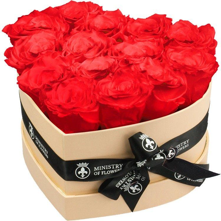 Rote Rosen Infinity Rosen Rose Und Infinity