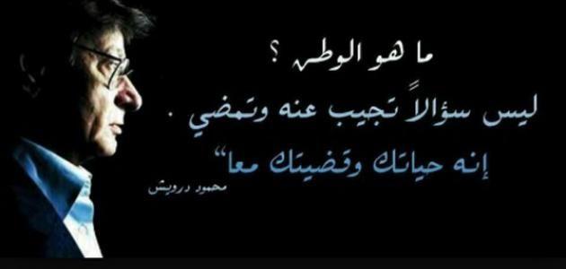 حكمة عن حب الوطن | my life | Palestine, Arabic quotes, Quotes