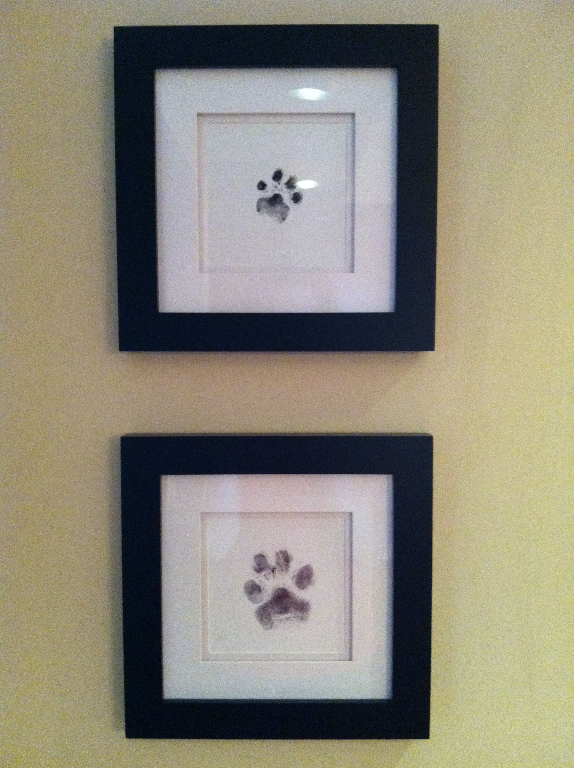 my puppies u0027 paw print art just used an ink pad to get their