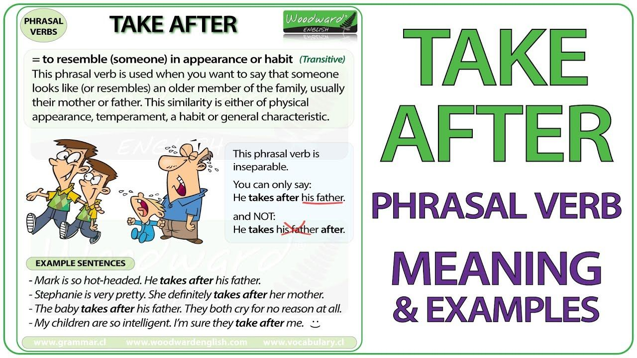 Take After Phrasal Verb Meaning Examples In English