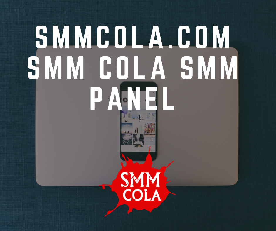 Smm panel provide the good source of income for your business on