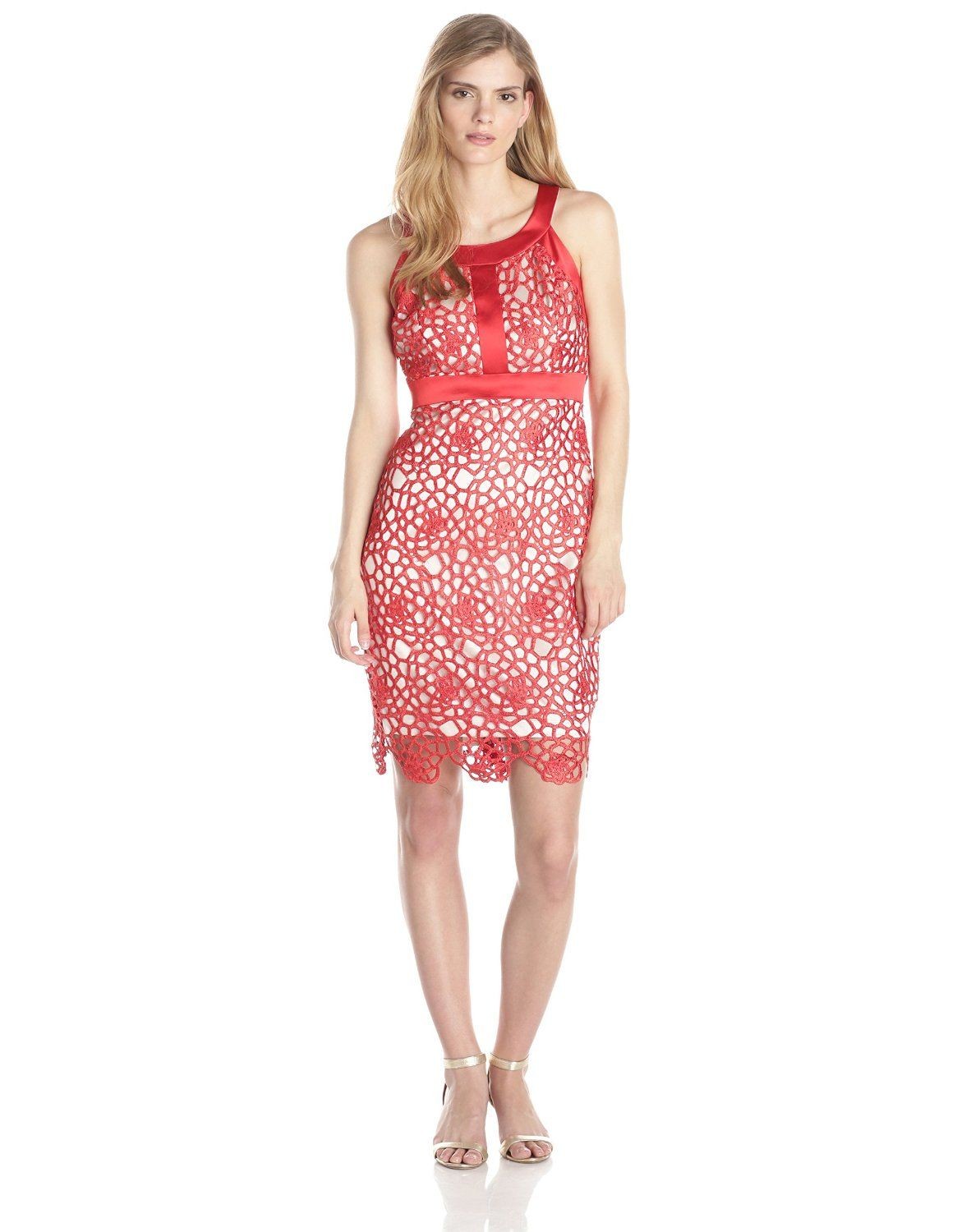 Lace Dress with Contrast Lining and Banding Detail by Jax   Lace ...