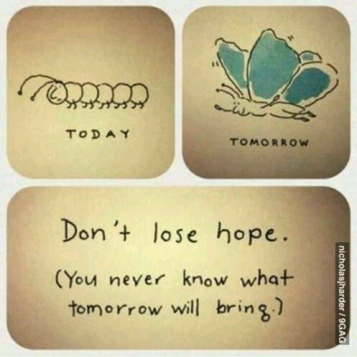 Dont lose hope<3