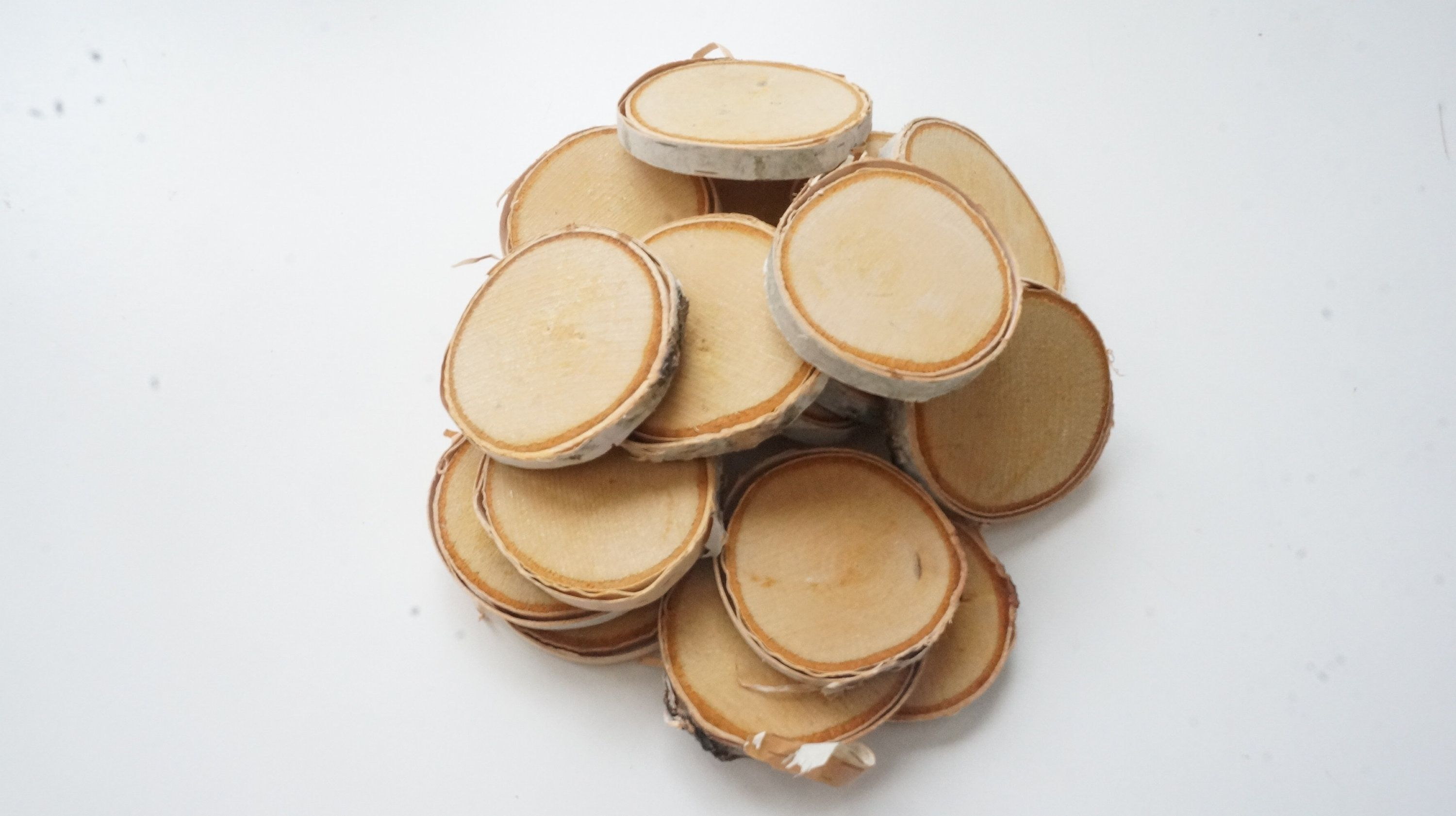 20 Small Birch Tree Slices 1 1 2 1 7 8 Inch Ornament Blanks Bulk Mini Log Slabs Tiny Wood Discs Pyrography Supplies Wood Slices Tree Slices What Sells On Etsy