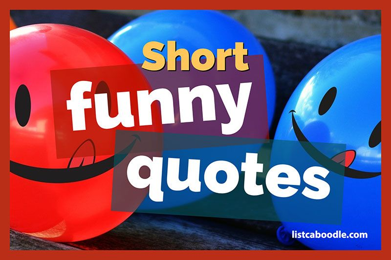 Short Funny Quotes That Will Keep You Laughing All Day Short Funny Quotes Funny Quotes Funny Quotes About Life