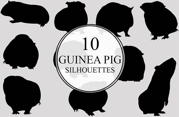 Pin On Land Animals Silhouettes