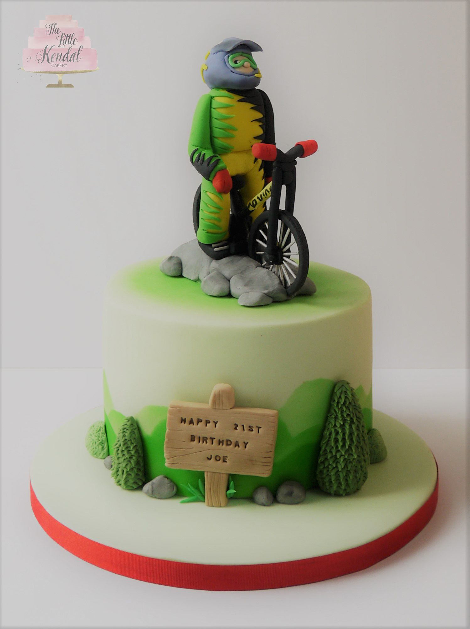 Bmx Downhill Mountain Bike Cake Mountain Biker Cake