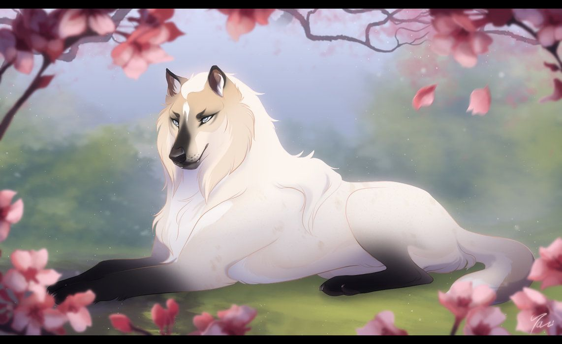 Her Morning Elegance by Tazihound on DeviantArt (With ...