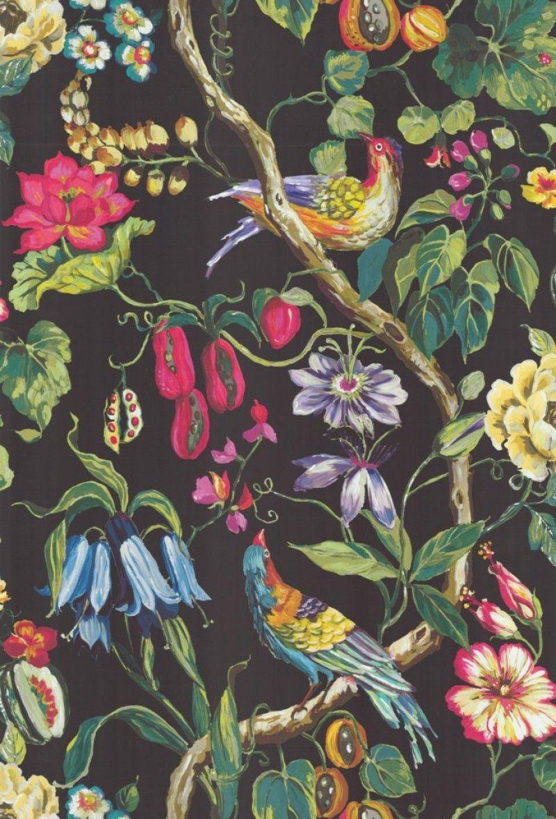 Klicken Für Größere Ansicht Tapeten Tapete Vögel