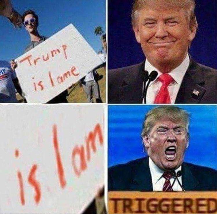 2f25ac8ddc6aa2bcd498b1cc395c2cfd we already know and we will still make the memes dank memes,Make A Triggered Meme