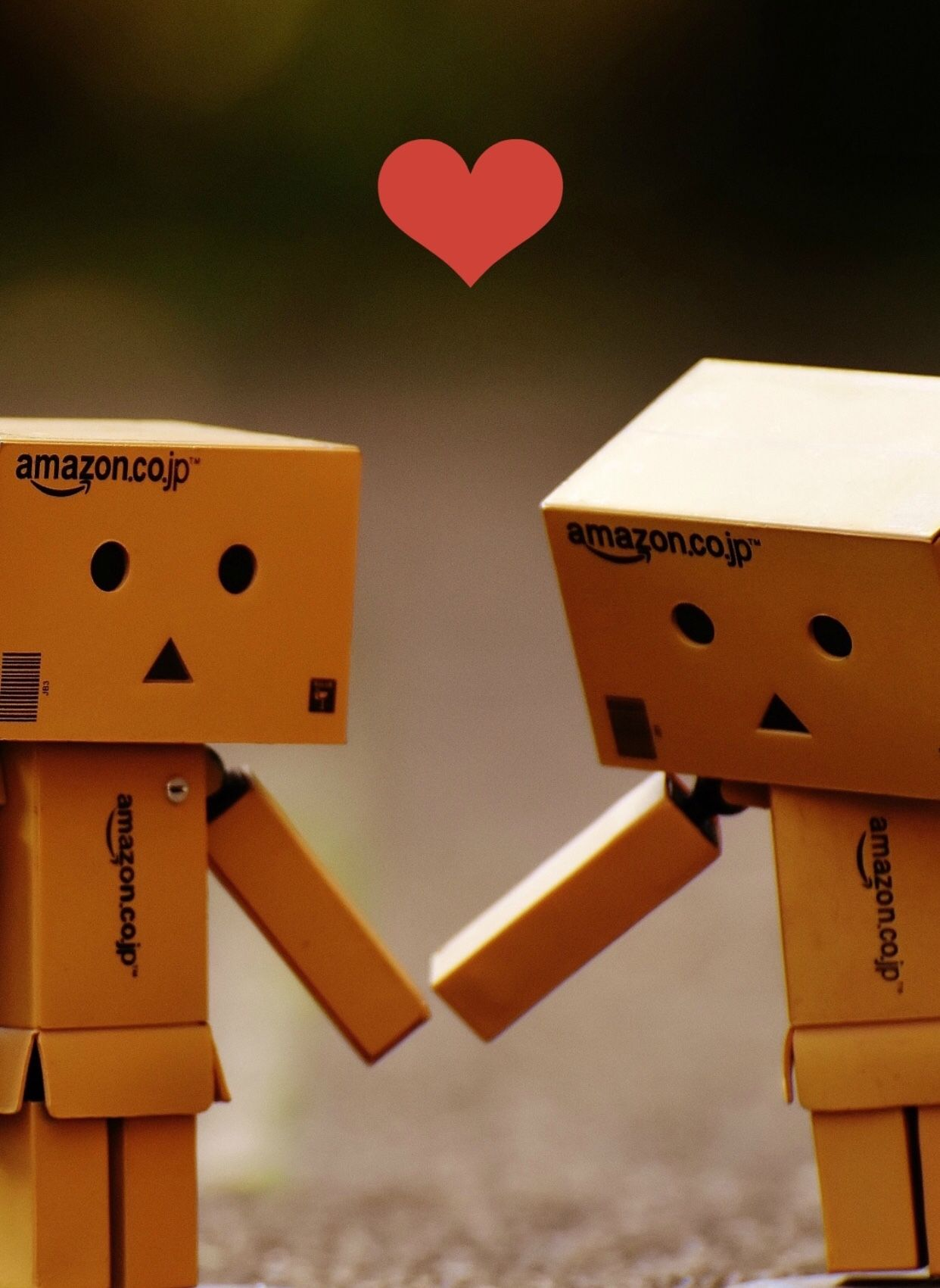 Danbo Amazon Box Cute Box