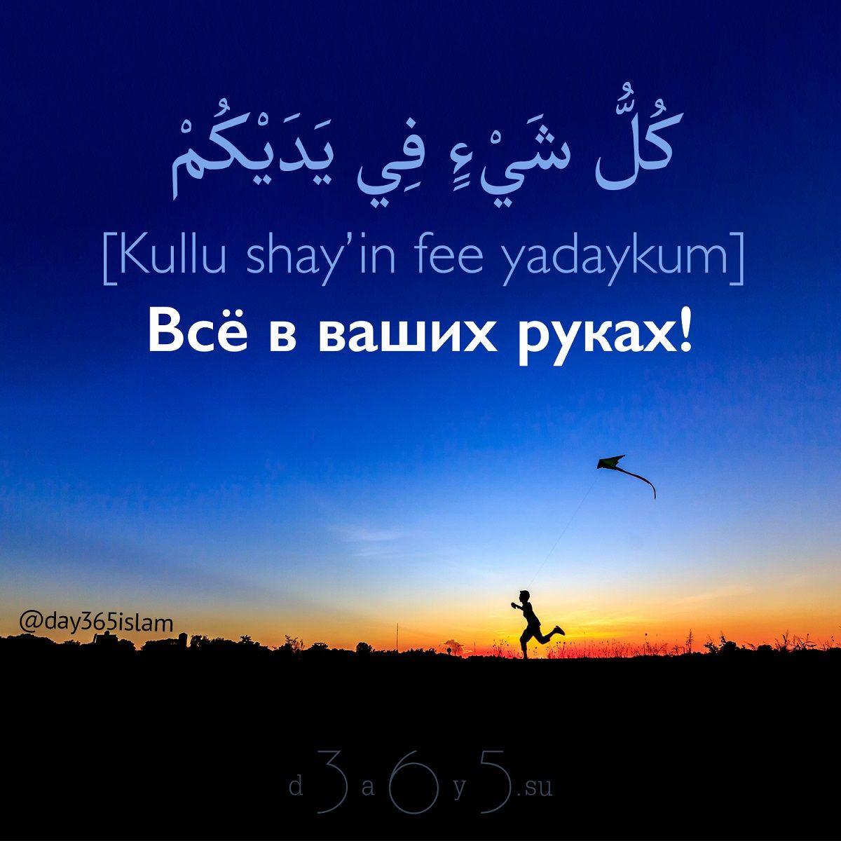 пожелания на арабском с переводом