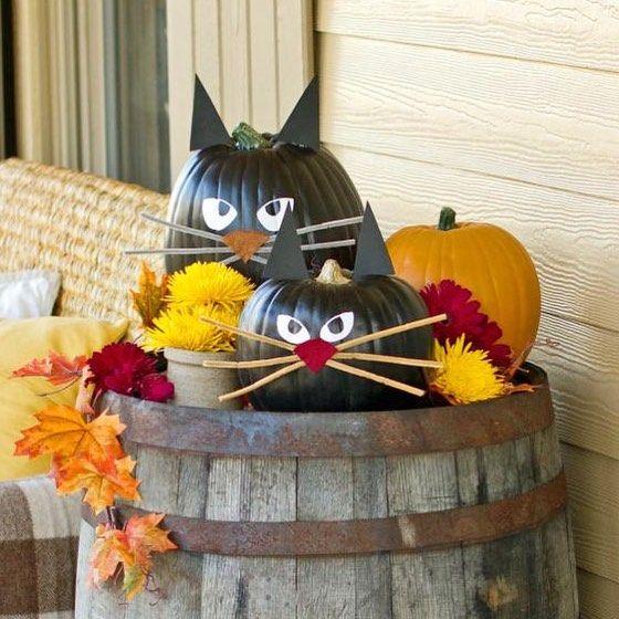 Os gatinhos nao podiam ficar de fora #olioliteam #halloween #diadasbruxas #treatsortricks @olioli_lifestyle