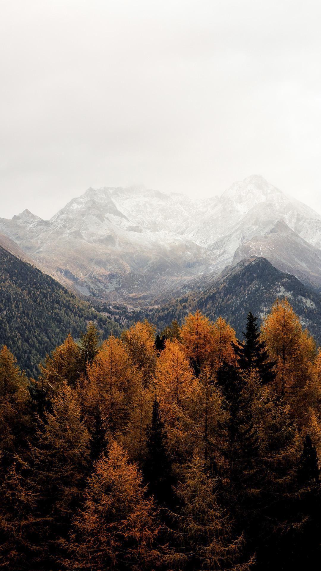 Autumn wallpaper mountains mobile iphone 517421444690663549 #autumnwallpaper Autumn wallpaper mountains mobile iphone 517421444690663549 #autumnwallpaper