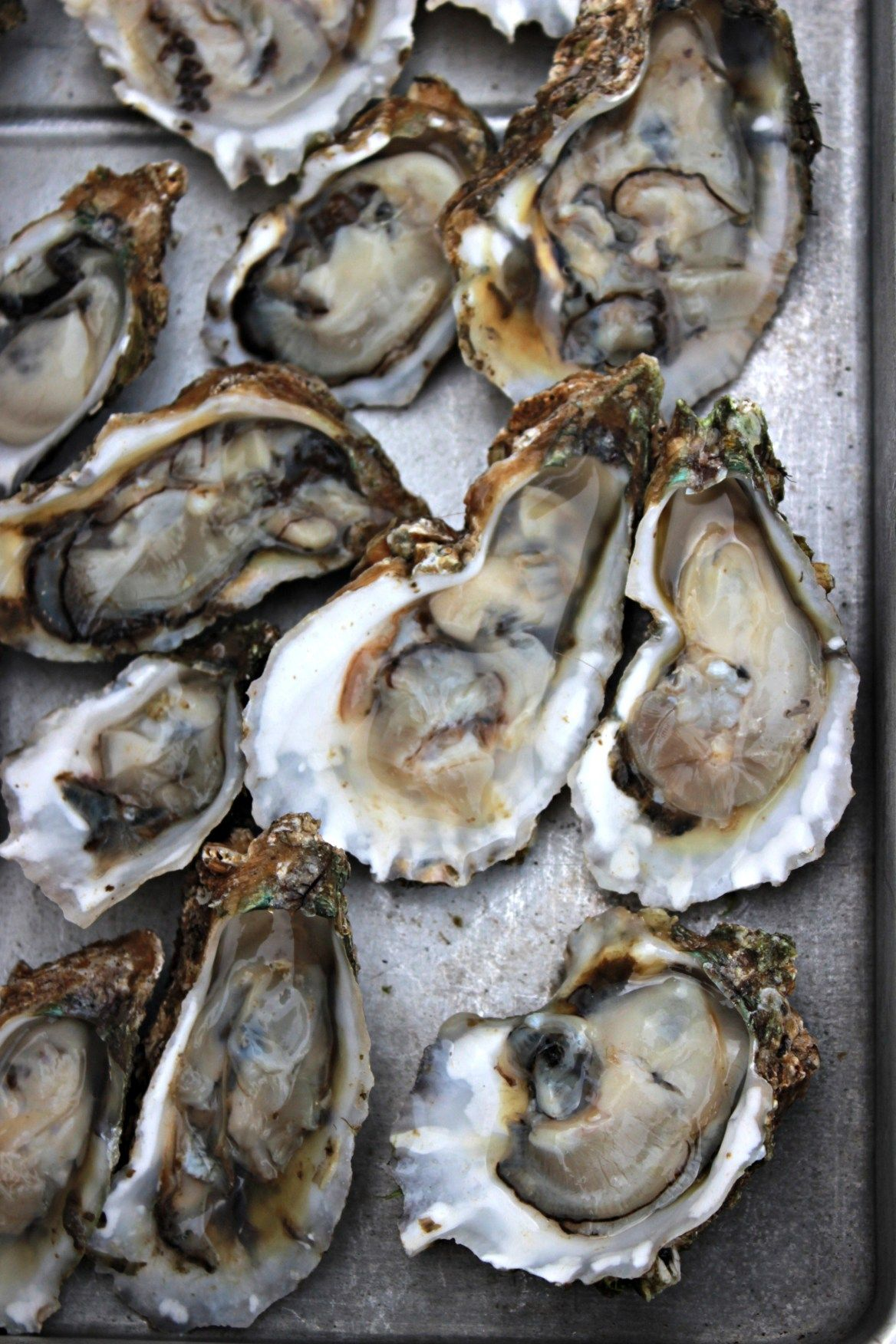 Oysters on the Half Shell   Oysters & Pearls   Ételek