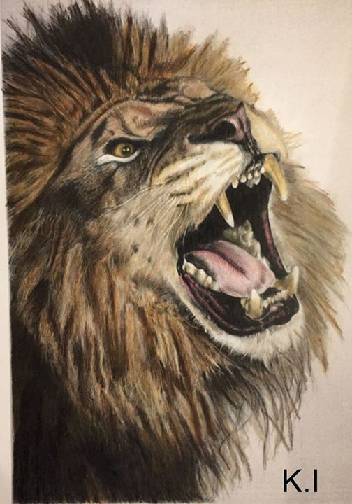 Pin By Alicia Carter On Tats Pencil Drawings Of Animals