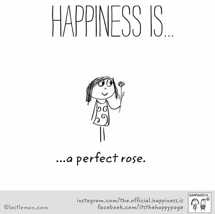 ~Happiness is a perfect Rose~