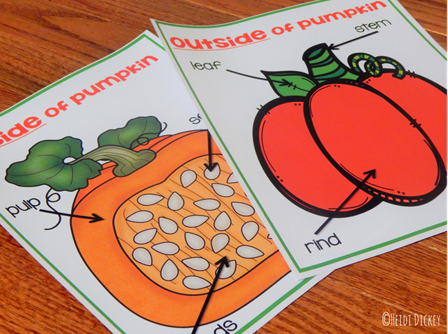 Inside and Outside of a Pumpkin Parts Label Charts | Parts ...