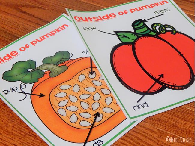 Pumpkin Life Cycle Thematic Unit Parts Of A Pumpkin Fall Preschool Activities Halloween Preschool