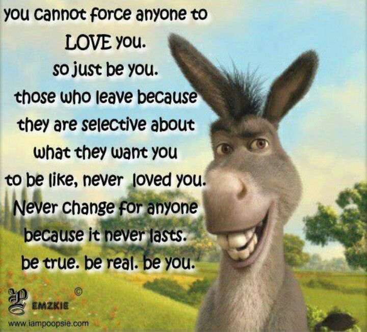 Words of wisdom from donkey... | Just be you, Lessons ...