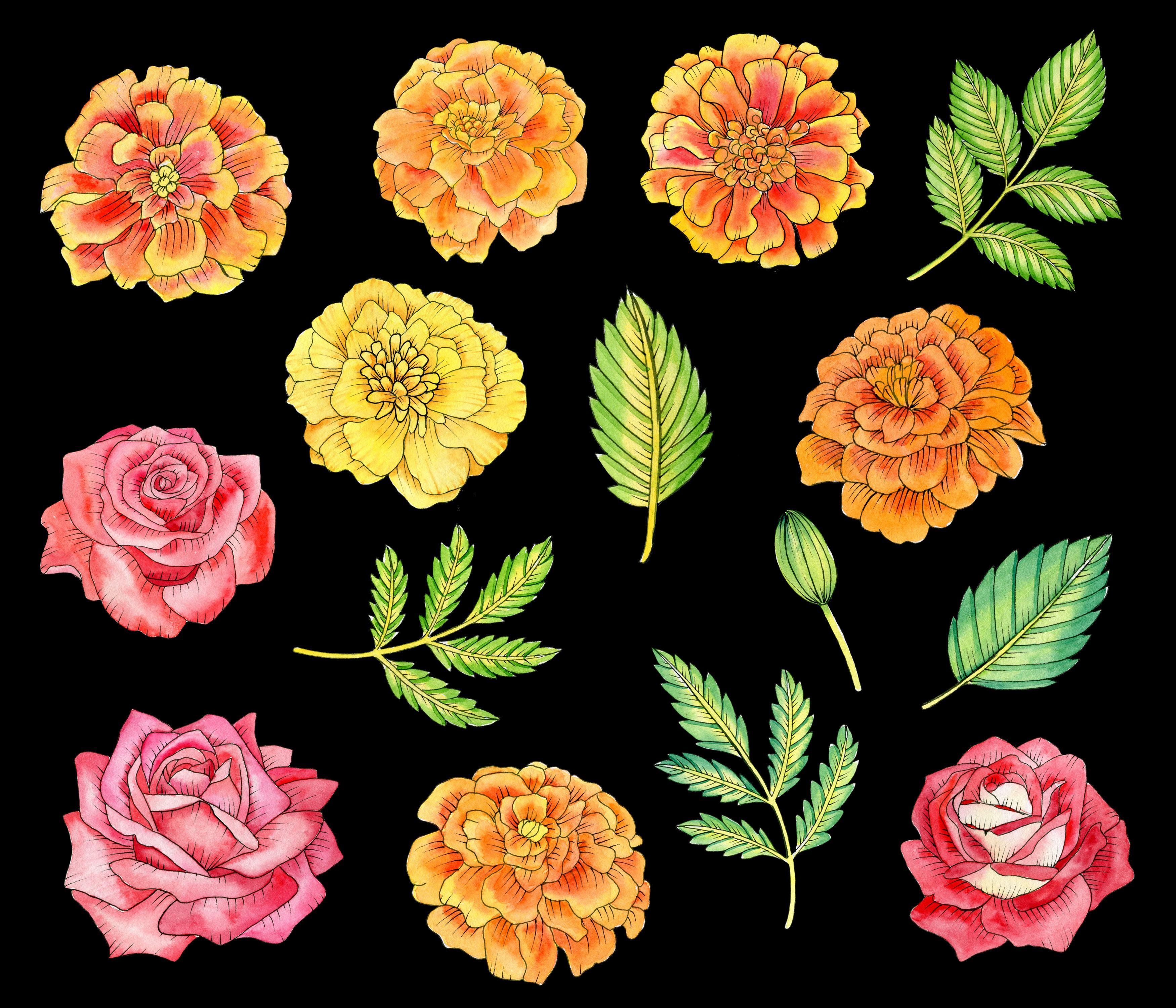 Watercolor Mexican Flowers Clipart El Dia De Muertos Floral Etsy Mexican Flowers Flower Art Flower Aesthetic