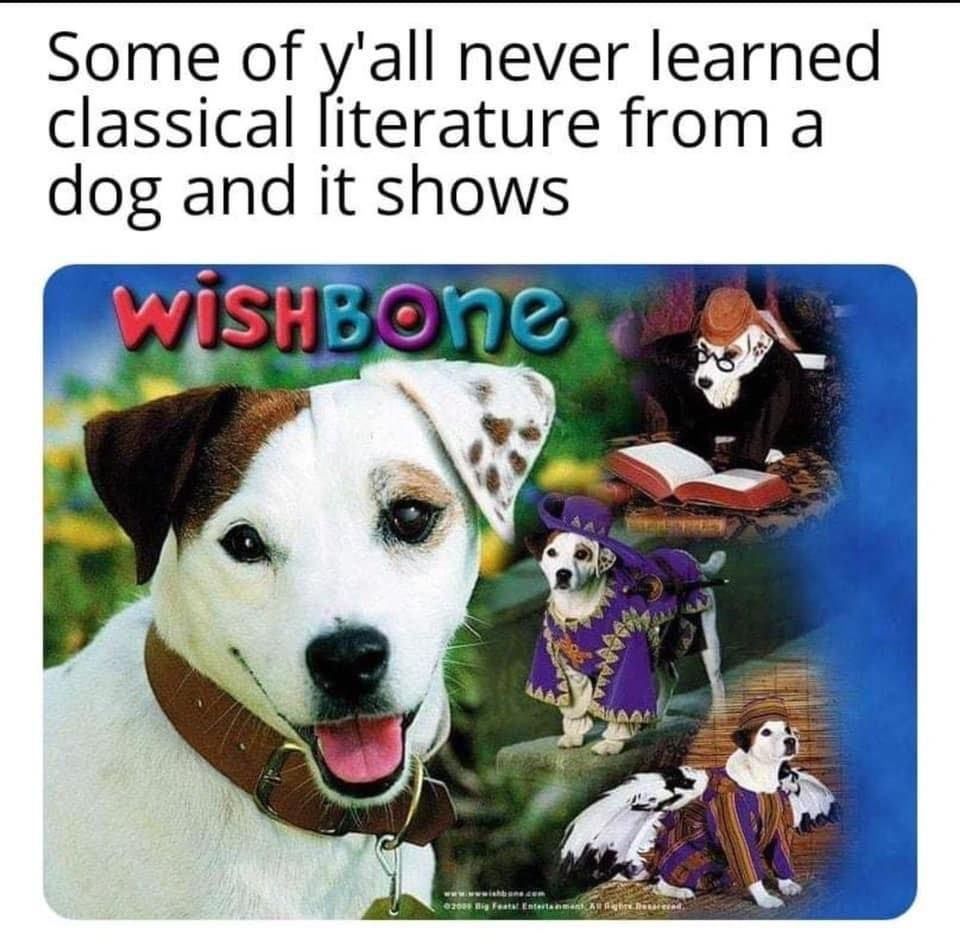in 2020 Dogs, Animal