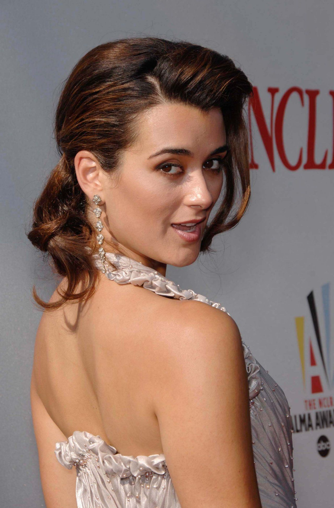 Cote De Pablo Wallpapers  Celebrity  Cote De Pablo, Ziva David, Ncis Stars-9118
