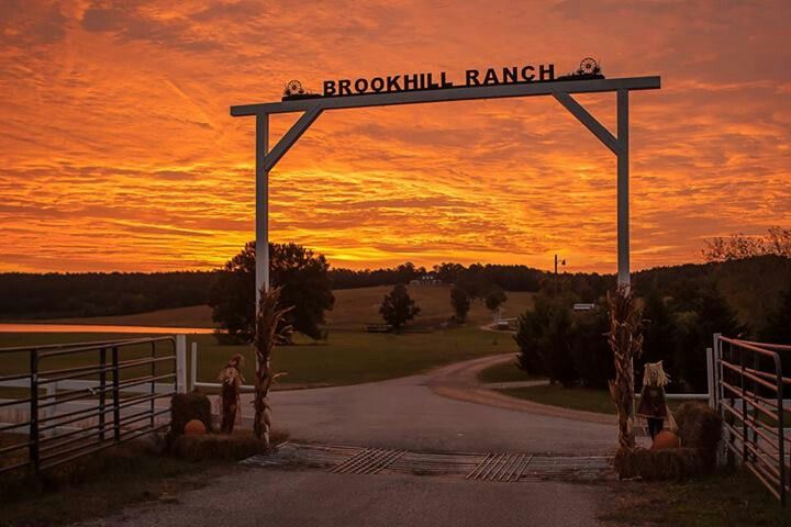 Brookhill Ranch Hot Springs Ar Photo By Mike Mcmillan Hot