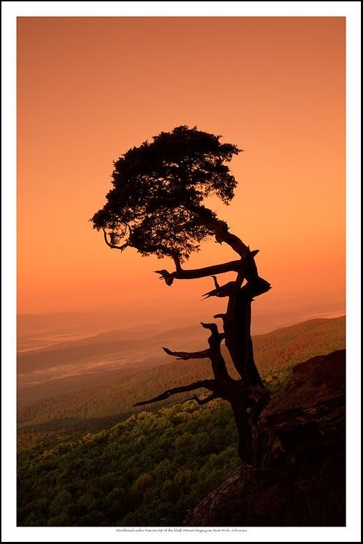 Mt. Magazine SP, Arkansas - Tim Ernst Photography