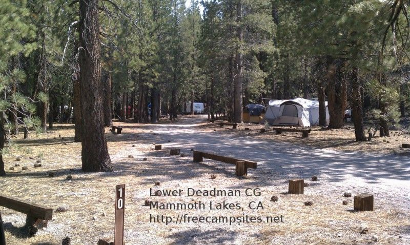 Map Of Free Camping Areas Go Camping For Free California Camping Camping Destinations Go Camping