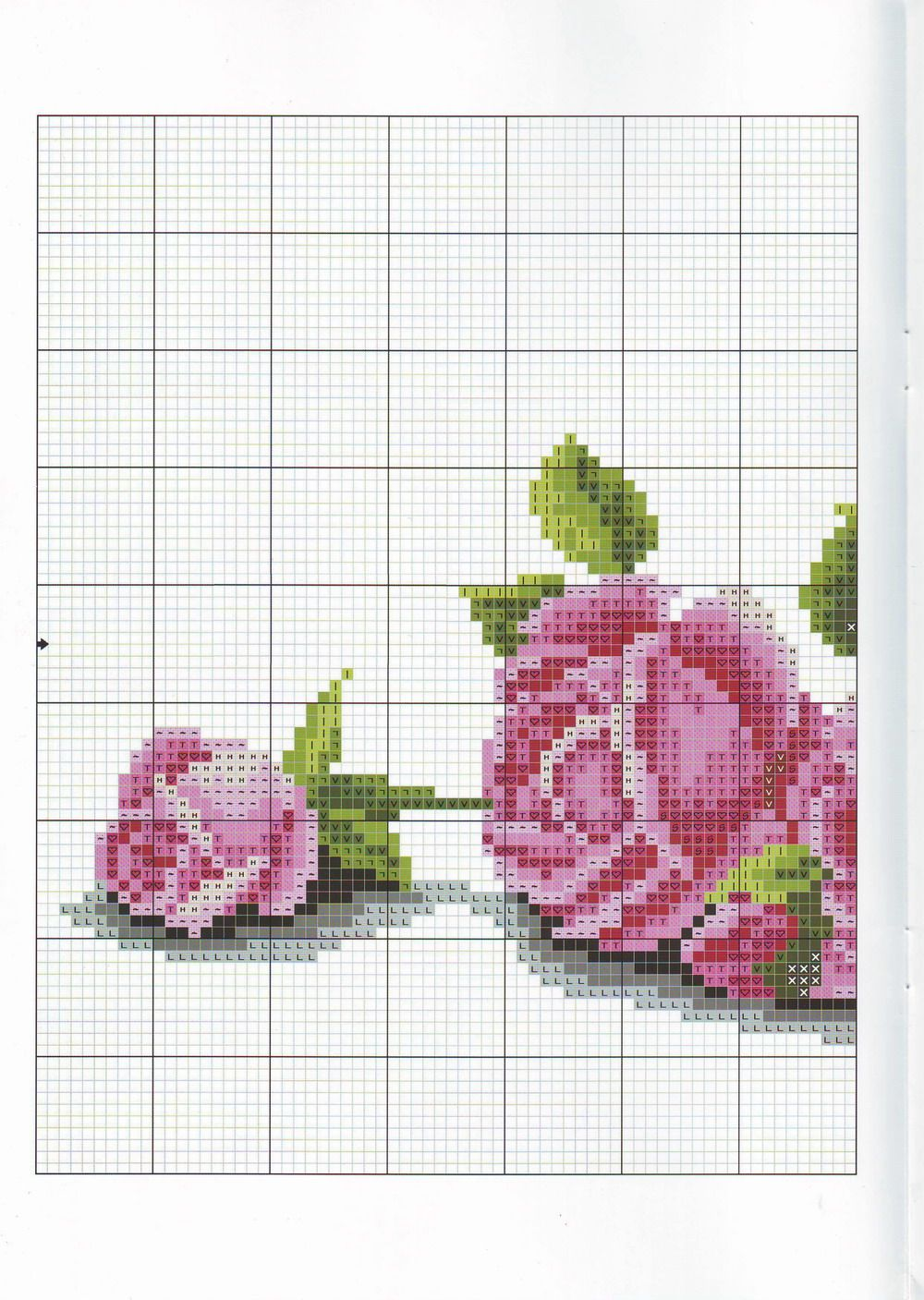 rosas1.jpg 1.000×1.407 piksel