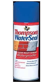 Thompson S Waterseal Clear Multi Surface Waterproofer Aerosol