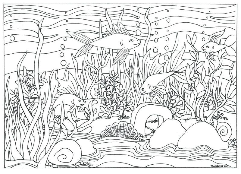 fish & aquarium scene coloring page  coloring for adults
