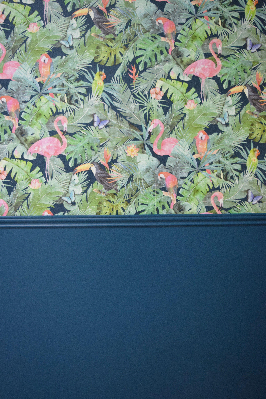 Papier Peint Avec Perroquet papier peint vinyl intissé perroquet playmouth en 2020