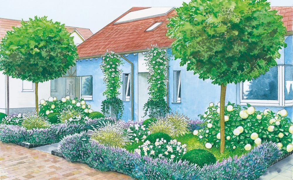 Vorgarten im Doppel-Pack | Vorgärten, Lavendel und Gestalten