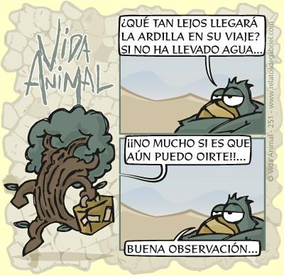 Vida Animal · En búsqueda de agua...
