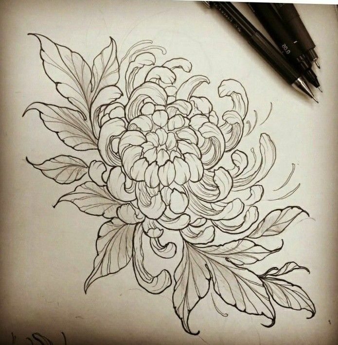 Chrysanthemum Chrysanthemum Tattoo Japanese Flower Tattoo Body Art Tattoos