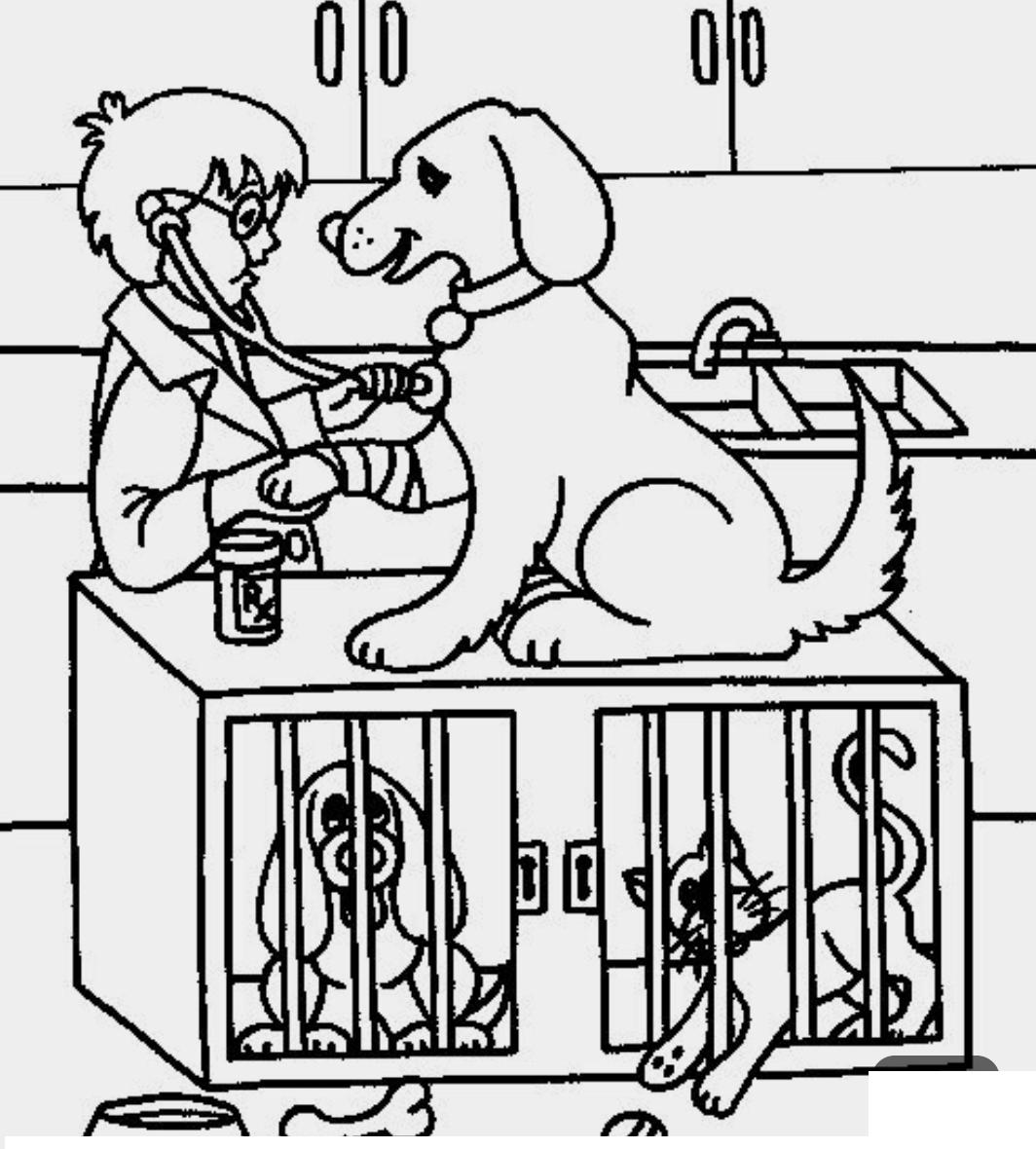 Ветеринар картинки для срисовки, открытки крещением
