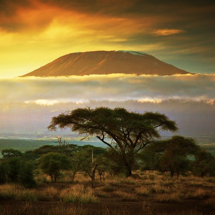 Image result for sunset kilimanjaro