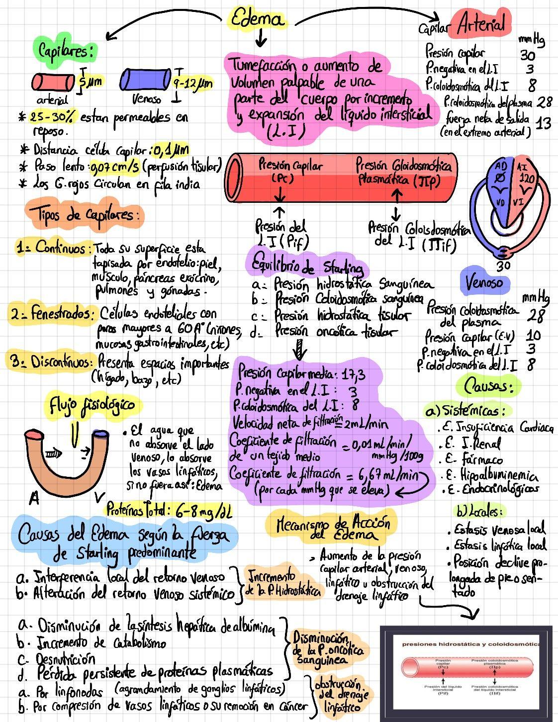 diabetes anatomia del corazon diapositivas